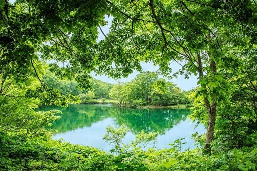 山形県の自然