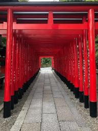 三光稲荷神社の鳥居