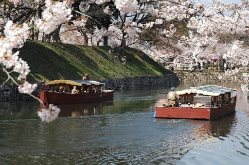彦根城の内堀を巡る屋形船