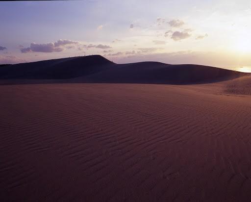 鳥取砂丘「馬の背」川