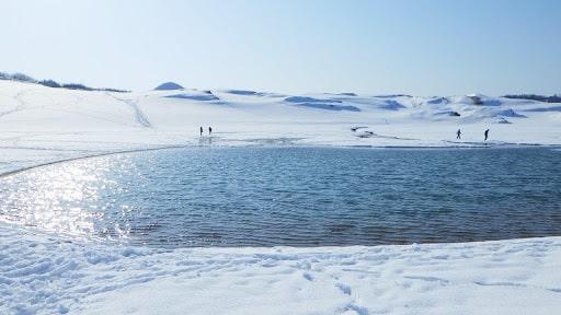 冬の鳥取砂丘